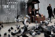 Eminönü'nde Keyifli Bir Gün
