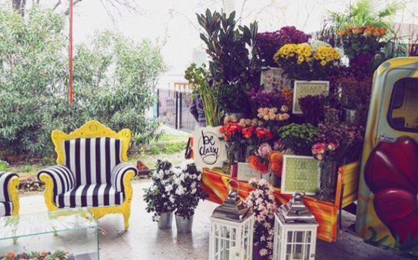 Baharın Habercisi Çiçekten Bir Festivale Hazır Olun