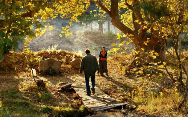 Ahlat Ağacı Sinemalarda